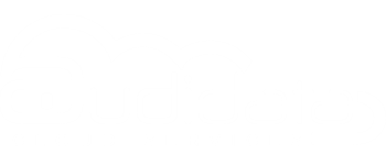 Audidata Cloud Services